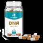 Bio Molecule - DNA 60 kapsúl